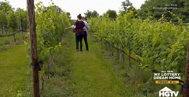 House Hunters Recap: Tiny Virginia Vineyard Home-9